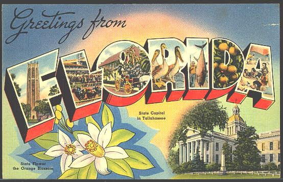 8c443-floridapostcard