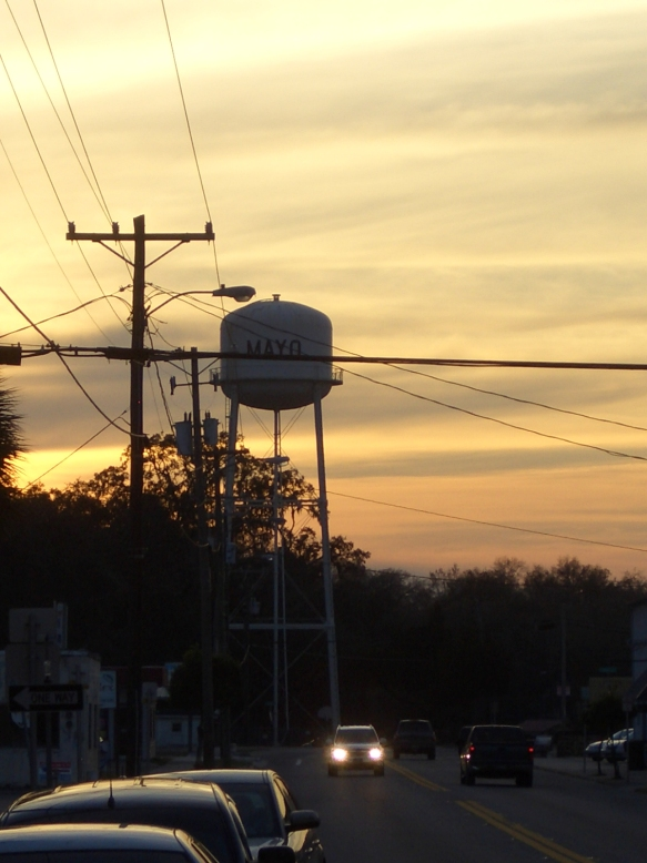 The Mayo Water Tower, March 2010.